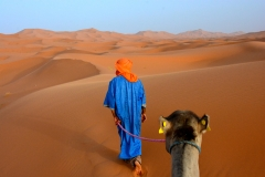 camel-on-a-rope, Morocco