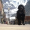 Size Matters, Telluride, Colorado