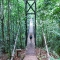 rain forest bridge, Bosque Del Cabo, Costa Rica